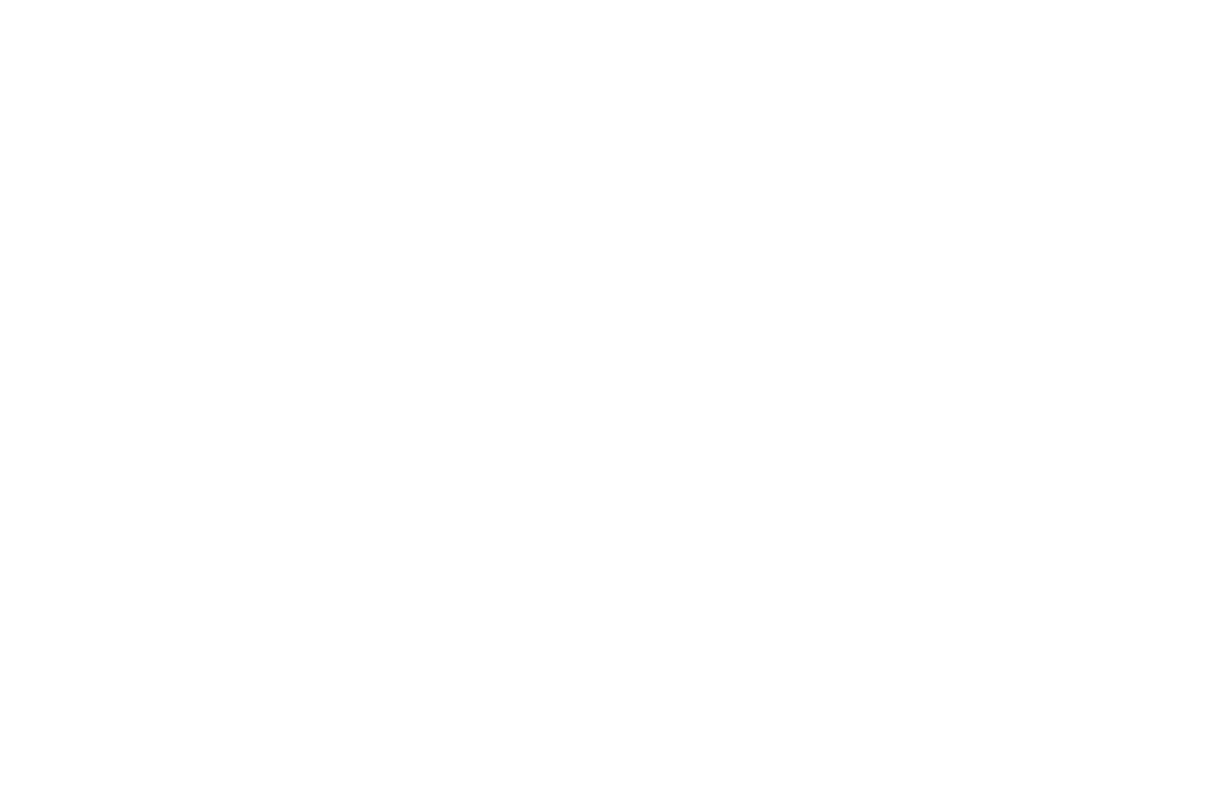 OFFICIAL SELECTION Simply Shorts World Cinema 2017 White